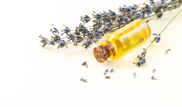 Bottle of lavender essential oil or flower perfume with dried lavender