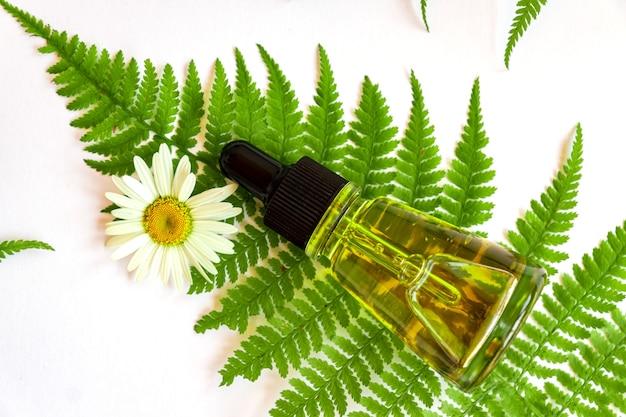 白い背景のシダの葉に天然有機フェイスセラムまたはエッセンシャルオイルのボトル。化粧品のブランドデザインをモックアップします。