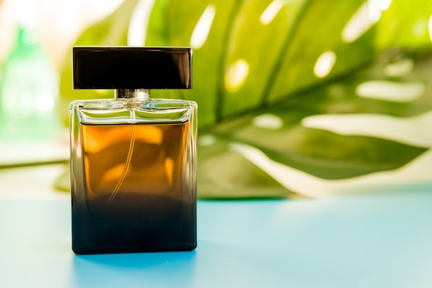 香水と緑の葉のボトル。水色の背景に大きな熱帯の葉と香水のボトル。