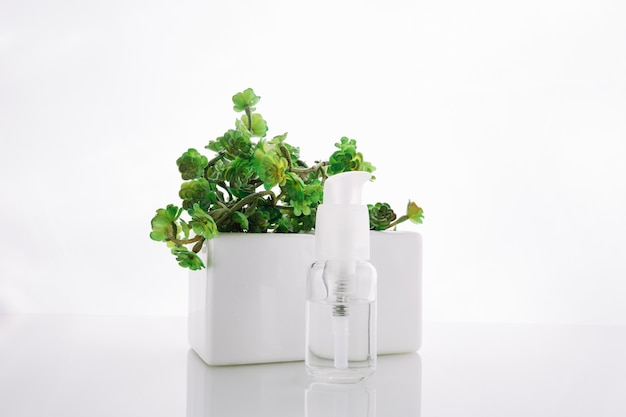Bottle with lotion near potted plant