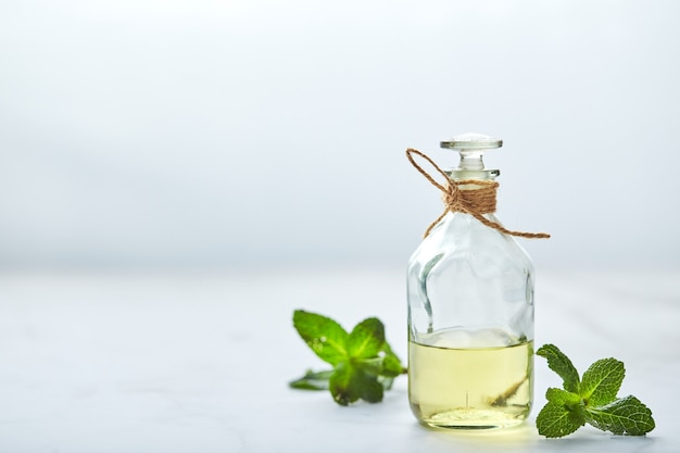 Bottle with mint essential oil and green leaf natual organic ingredients for cosmetics skin care body treatment beauty care concept
