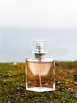A bottle of woman perfume stands on a green moss against the background of the sea. sea summer feminine aroma. nature