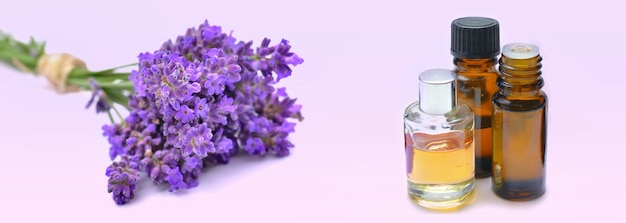 Bottles of essential oil and  bouquet of lavender flowers in pink surface