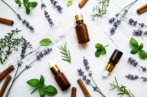 Bottles of essential oil with rosemary, thyme, lavender, and mint