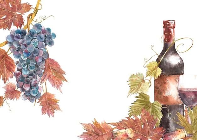 Bottles and glasses of wine and leaves of grapes