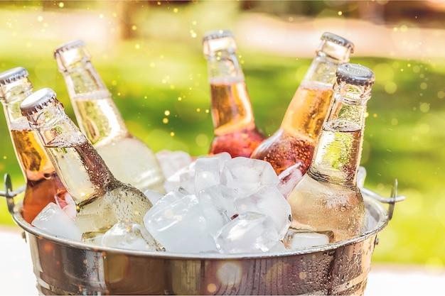얼음이 분리된 차갑고 신선한 맥주 한 병