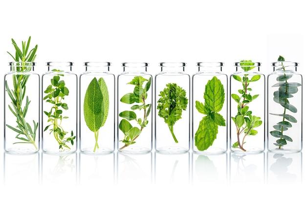 Бутылки из прозрачного стекла со свежей зеленью