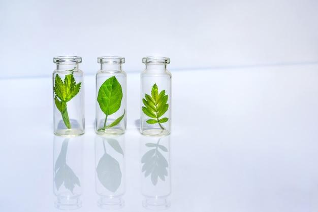 Флаконы с травами для натуральных эфирных масел и органической косметики