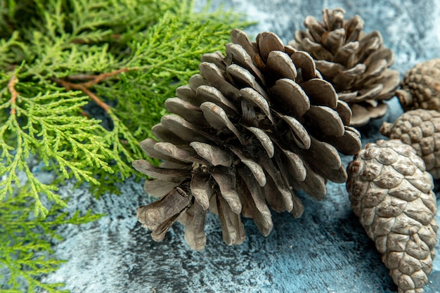 Bottom close view closed and open pinecones pine branch on grey surface