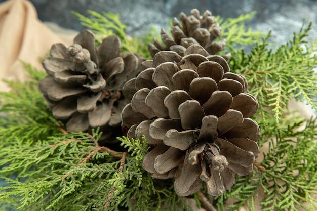 Vista ravvicinata in basso pigne rami di pino su superficie scura