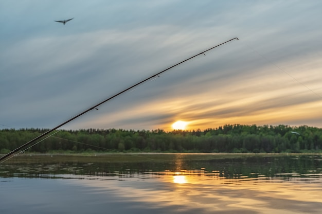 The bottom fishing rod stands with a stretched line against the background of the evening sky