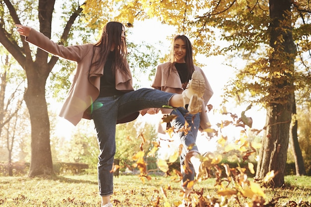 Bottom view of young smiling brunette twin girls having fun and kicking leaves with their feet while walking in autumn sunny park on blurry background.