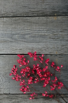 A bouquet of blooming flower heuchera on the surface of the old boards with a texture