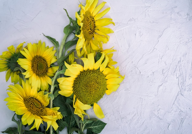 Bouquet of blooming yellow sunflowers