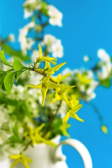 Bouquet of blossoming yellow and white spring flowers in vase on bright blue paper background