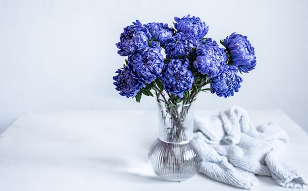 Un bouquet di crisantemi blu in un vaso di vetro e un elemento a maglia su uno sfondo bianco, copia dello spazio.