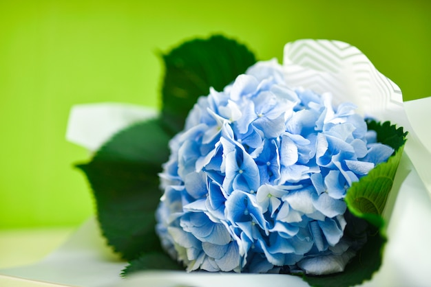 Bouquet of blue flowers on a green background