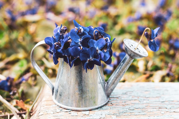 A bouquet of blue of forest flowers in a tin watering can