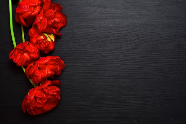 Bouquet of bright red fluffy tulips on a black wooden surface