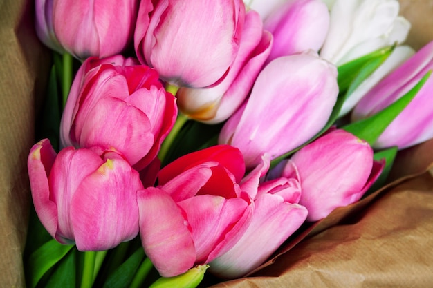 Bouquet of bright tender pink and white tulips in craft paper close-up
