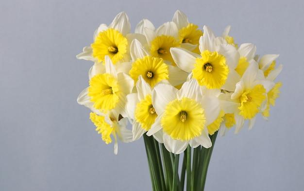 Букет ярких желто-белых нарциссов на светлой поверхности