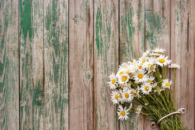 Bouquet chamomile daisies in door handle fence old wooden boards
