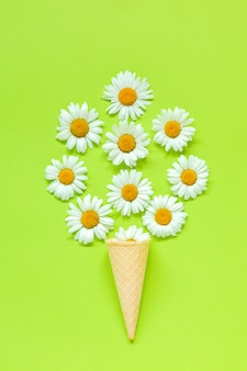 Bouquet chamomile daisies flowers in waffle ice cream cone