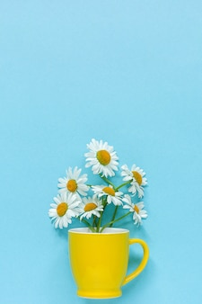 Bouquet chamomile daisies flowers in yellow mug on pastel blue color paper
