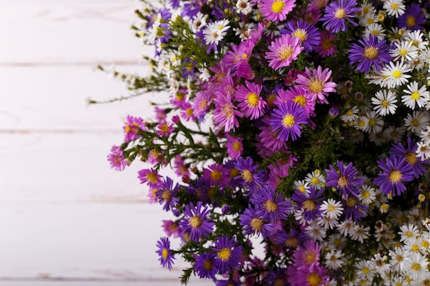 Bouquet of colorful aster flowers