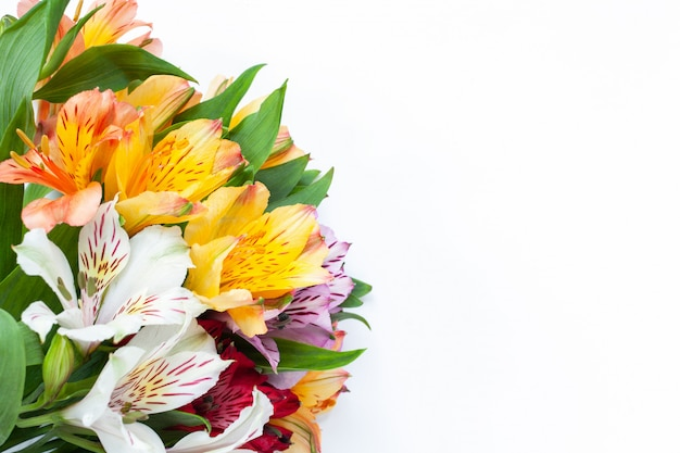 Bouquet of colorful flowers alstroemeria on white background