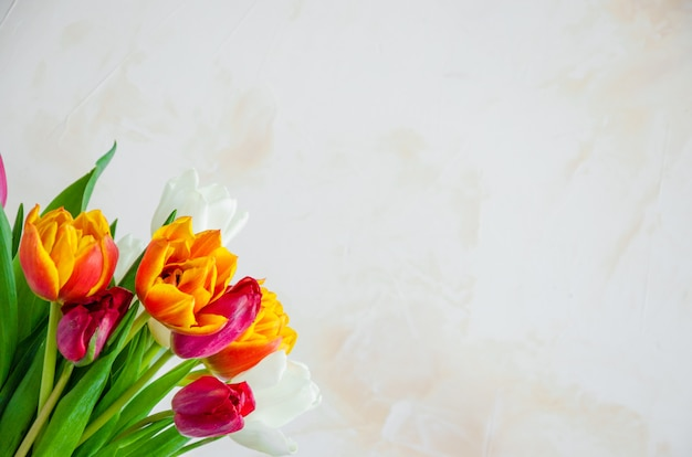 Bouquet of colorful natural tulips in a glass vase with water on a concrete background.