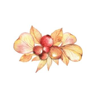 秋の葉と果実の水彩手描きの花束と花束組成。