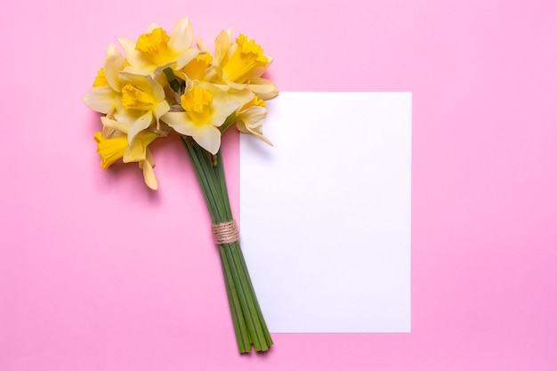 A bouquet of daffodils and a sheet of white paper on a pink background. spring yellow flowers. paper with space for text. flat lay design, top view.