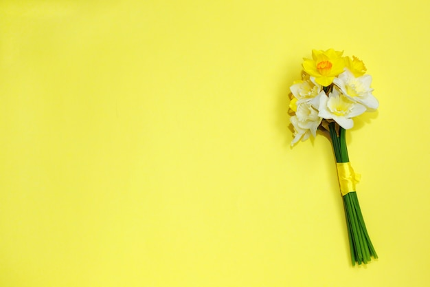 Bouquet of daffodils on a yellow background
