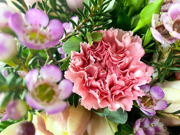 Bouquet of dianthus caryophyllus closeup