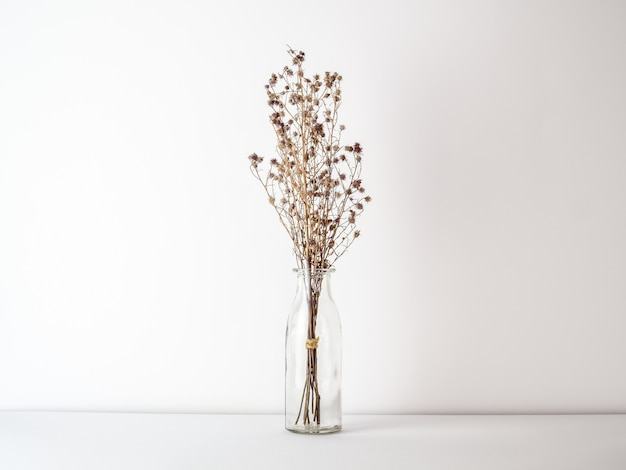 Bouquet of dried gypsophila flowers for decoration