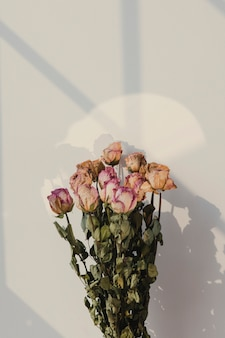 Bouquet of dried roses with a window shadow on a wall