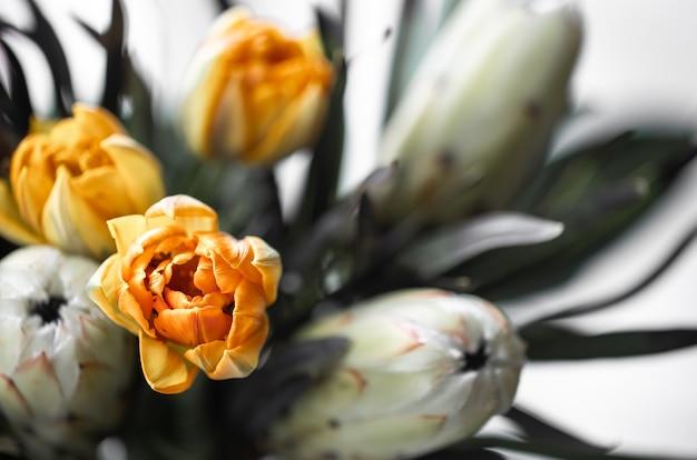 Un bouquet di fiori esotici di protea reale e tulipani luminosi. piante tropicali nella composizione floristica.