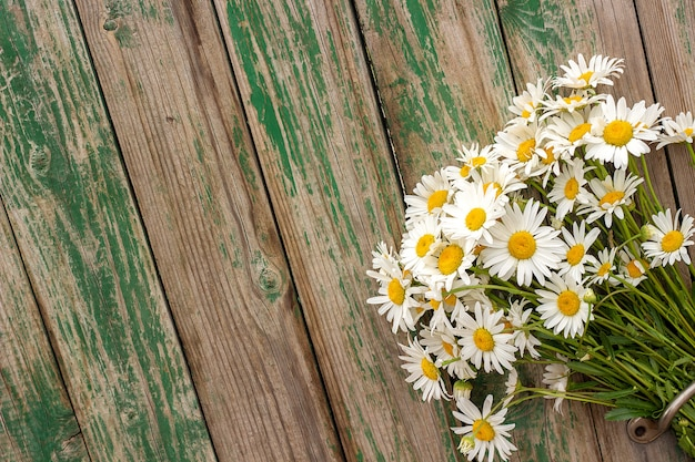 Bouquet field chamomile daisies flowers in door handle on old wooden background.