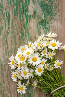 Bouquet field chamomile daisies flowers