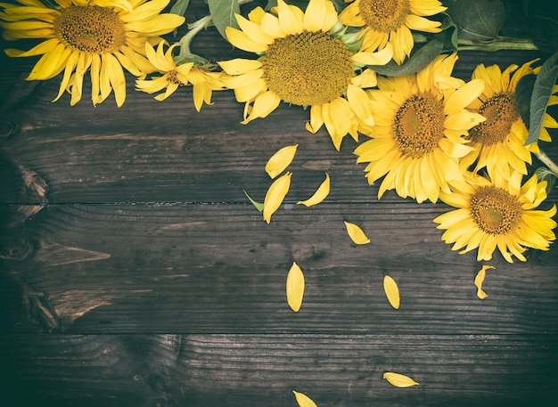Bouquet of flowering yellow sunflowers on a brown surface