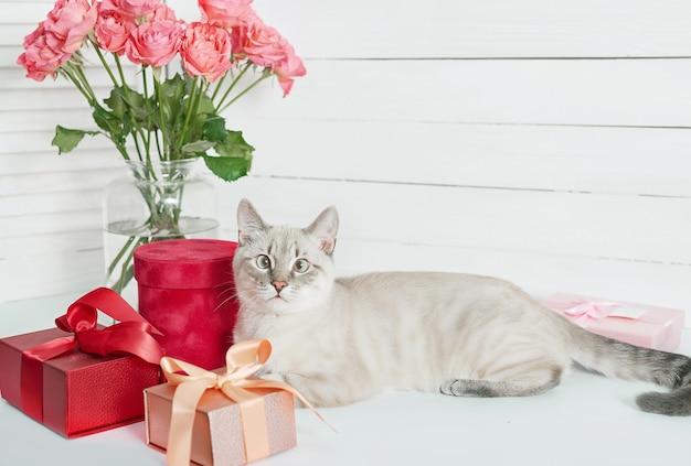 Bouquet of flowers roses near cute kitten