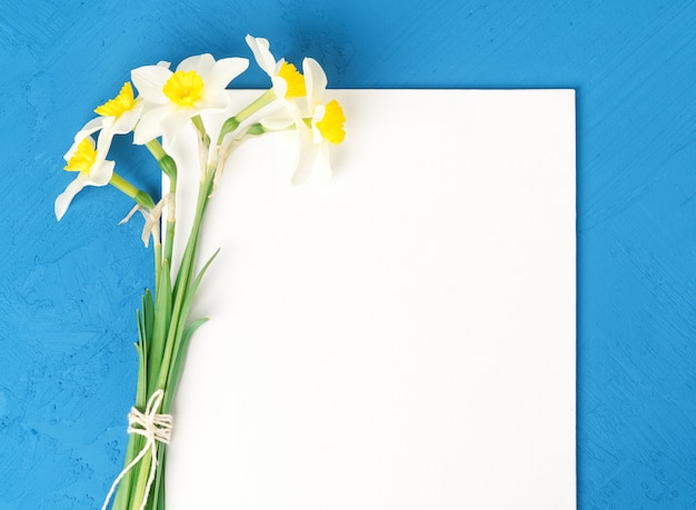 Bouquet of fresh flowers daffodils  blank white paper in blue textured concrete background