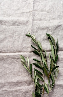 Bouquet of fresh olive tree branches on an old vintage gray napkin tablecloth table background. natural product concept. top view