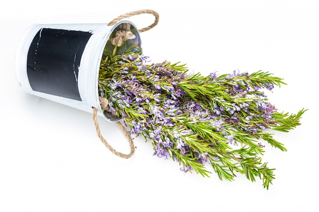 Bouquet of fresh rosemary and green with delicate purple flowers.