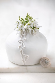 Bouquet of fresh snowdrops spring flowers in white porcelain vase with snail shell on white marble table. spring time composition