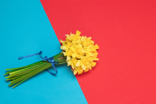 Bouquet of fresh yellow daffodils in female hands on background with space for text