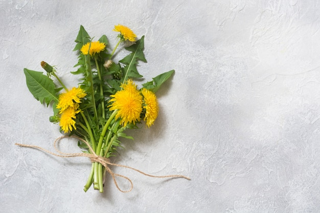 Bouquet of fresh yellow dandelion on light background