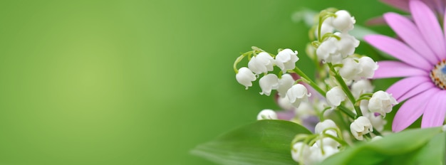 Bouquet of freshness flowers with lily of the valley blooming on green background in panoramic view