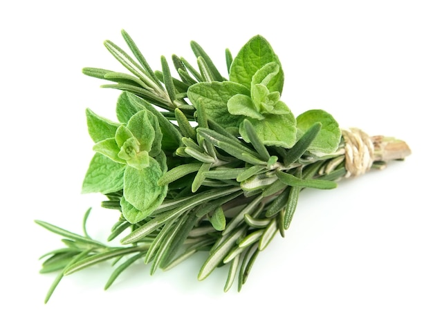 Bouquet from rosemary and oregano on a white background